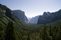Blick in das Yosemite Valley