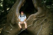 Ich am Fuß eines Mammutbaums