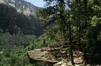 Felsen im Zion Nationalpark