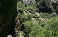 Unter dem Wasserfall Weeping Rock
