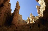 Säulenlandschaft im Bryce Canyon