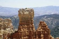 Große Säule im Bryce Canyon