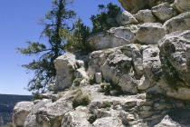 Der obere Felsen sieht fast wie eine Hundeschnauze aus