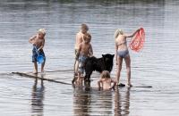 Schwedische Kinder und ein Hund