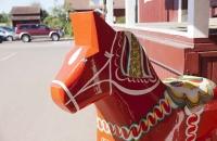 Kopf von Dalarna Pferd in Nusnäs