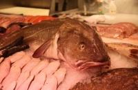 Der grosse Fisch schaut auch nicht mehr sehr glücklich