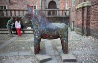 Pferd im Hof des Stadhus