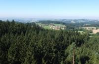 Landschaft rund um Kopfing
