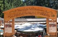 Der Waldgasthof Oachkatzl im Baumkronenweg von Kopfing