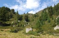 Landschaft beim Wildebensee