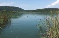 Blick auf den Turnersee