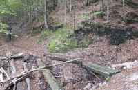 Dieser kleine Holzsteg hat auch schon bessere Zeiten erlebt