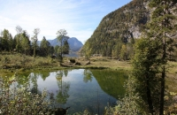 Ein kleiner Teich neben dem Altaussee