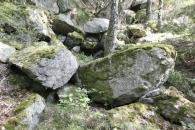 Steine – wie im Waldviertel
