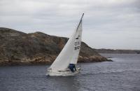 Segelboot in den Schären