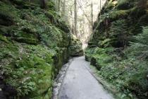 Interessante Landschaft in der Sächsischen Schweiz