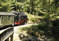 Über Brücken und durch den Wald dampft unser Zug