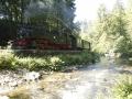 Der Zug fährt Richtung Dippoldiswalde an uns vorbei