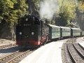 Der Zug dampft in die Station Rabenau