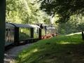 Durch den Wald dampft der Zug den Berg hinauf