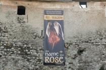 Der Name der Rose wird hier aufgeführt