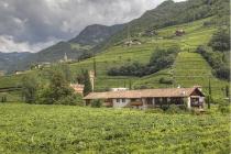 Obst- und Weingärten inmitten von Bozen
