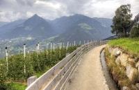 Hier kann man schön das Bewässerungssystem neben dem Weg sehen