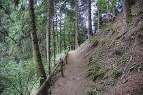 Waalweg im Wald kurz vor Verdins
