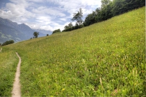 Schöne Blumenwiesen entlang des Waalweg