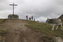 Gipfelkreuz an der Mitteragalm