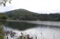 Der große Montiggler See