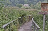 Steg am großen Montiggler See