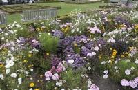 Park vor dem Bahnhofsgebäude in Dunedin