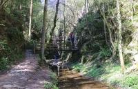 Brücken und Stufen