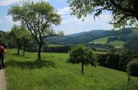 Hügellandschaft im Alpenvorland