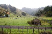 Landschaft beim Campingplatz
