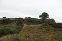 Landschaft am Weg zur Cathedral Cove