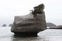 Felsen bei der Cathedral Cove
