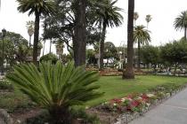 Park in Napier
