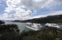 Blick über den Hafen von Picton