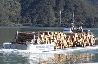 Ein Holztransport