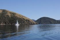 Katamaran im Sound