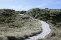 Weg durch die Düne