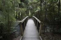Nette Holzbrücke