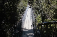 Hängebrücke in der Hokitika Gorge