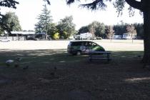Mein Stellplatz am Campingplatz von Ashburton