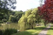 Teich in Würnitz