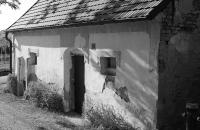 Weinkeller am Rochusberg