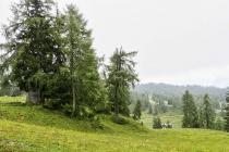 Landschaft auf der Tauplitzalm