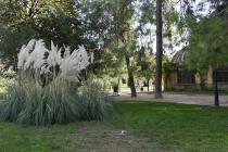 Im Park in Barcelona